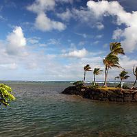 Palm trees grace this little man-made island off the beach at The Kahala Hotel & Resort, Honolulu, Hawaii.