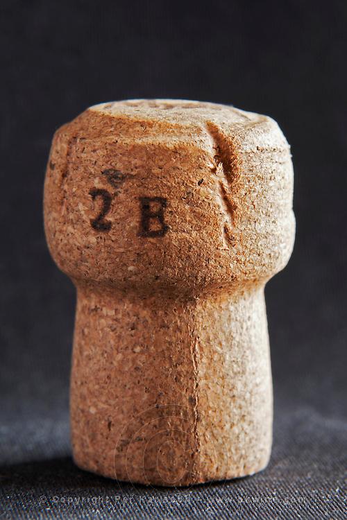 mytik technical champagne cork