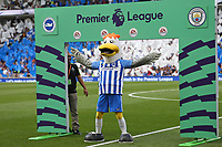 Football - 2017 / 2018 Premier League - Brighton and Hove Albion vs. Manchester City<br /> <br /> Brighton mascot Gully celebrates in front of the Premier League sign before kick off at The Amex Stadium Brighton <br /> <br /> COLORSPORT/SHAUN BOGGUST