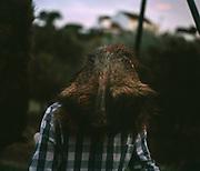 """Monteiro Pedro Alves. Batismo pelo primeiro abate de javali. Montaria da zona de caça municipal de Montargil. Novembro 2013.<br /> <br /> <br /> A pose e a presa<br /> <br /> """"Arte"""" ou """"acto"""", segundo o dicionário, a caça no meu imaginário sempre foi mais fotografia que taxidermia como se a presa fosse apenas um mero acessório da pose do caçador – o verdadeiro troféu. <br /> <br /> Quando decidi documentar o quotidiano dos caçadores portugueses veio-me instantaneamente à memoria o """"cliché"""" do fotógrafo J.A. da Cunha Moraes, captado durante uma caça ao hipopótamo no Rio Zaire, em Angola e publicado em 1882 no álbum Africa Occidental. O grande caçador branco posava, ao centro da fotografia, com a sua espingarda, rodeado pela tribo local.<br /> <br /> Foi com este cliché que cheguei ao Alentejo em busca dos grandes caçadores contemporâneos. Durante meses a fio, de Mora a Mértola, passando por outros concelhos alentejanos, vi veados, javalis, raposas e corças. Fotografei montarias em zonas de caça associativa e em herdades privadas, caçadores ricos e remediados. Caçadores de carne e caçadores de troféu. Fotografei quem vive da caça e quem a vê como um hobby para alguns fins de semana durante o ano. Acompanhei os diversos tempos e momentos de uma caçada, entre a pose e a presa, o vinho e o sangue, o estampido dos tiros e o murmúrio dos campos.<br /> <br /> Logo nos primeiro dias,  durante uma """"enxota"""" ao javali nos campos de milho de Montemor-o-Novo, tive a sorte de cruzar-me com o José António, mais conhecido por Berras, dono da matilha Tempestade de Mora. A personalidade, conhecimentos e experiência deste caçador e do Nelson, o seu ajudante e amigo, levaram-me a segui-los ao longo de várias caçadas. <br /> <br /> Tive sorte, ouvi histórias de caça, da boca de caçadores conscientes mas também da boca daqueles para quem só importa a quantidade. Encontrei uma população envelhecida, essencialmente masculina, onde os jovens são minoria. Uma espécie ameaçada pelo envelhecime"""