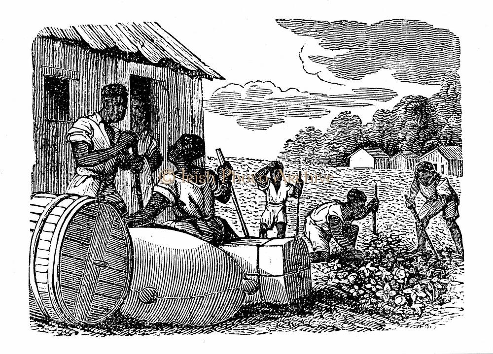 Slaves on a cotton plantation in Georgia, USA. Wood engraving c1830.