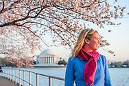 Washington D.C. during cherry blossom season.