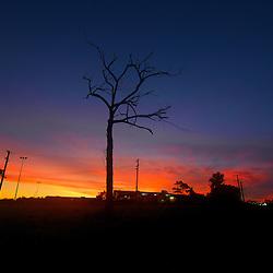 nature and sunsets shots By jaydon Cabe, Taken around brisbane QLD, Australia