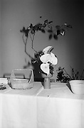 14/02/1964<br /> 02/14/1964<br /> 14 February 1964<br /> Japanese women arranging flowers at the Intercontinental Hotel, Dublin. Floral arrangement.
