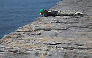 Peering over edge of sheer cliff Dun Aengus fort Inishmore, Aran Islands, County Clare, Ireland