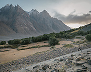 Bringing back cow herd. The life of the Wakhi people, in the Wakhan corridor, amongst the Pamir mountains. Trekking with Paul Salopek.