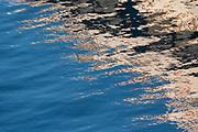 Water reflection, Victoria Harbor, British Columbia, Canada