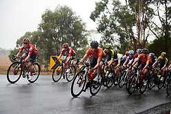 Sara Poidevin (CAN) sets the pace during the 2020 Cadel Evans Great Ocean Road Race - Deakin University Women's Race, a 121 km road race in Geelong, Australia on February 1, 2020. Photo by Sean Robinson/velofocus.com