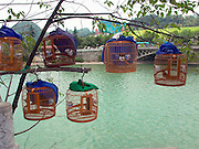 Bird market near Duyun, Guizhou Province, China.