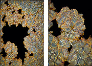 """To purchase this Limited Edition Print, please use the link in the menu.<br /> <br /> I was just drawn to the iridescence of this broken and corroded Georgian wired glass window. In the end I decided upon a diptych of two shots, a close up in conjunction with a wider shot as I loved the balance of positive and negative spaces between the two.<br /> <br /> Diptych <br /> Acrylic Gallery Print 15"""" x 10""""<br /> Limited Edition of 15<br /> <br /> £320 + shipping"""