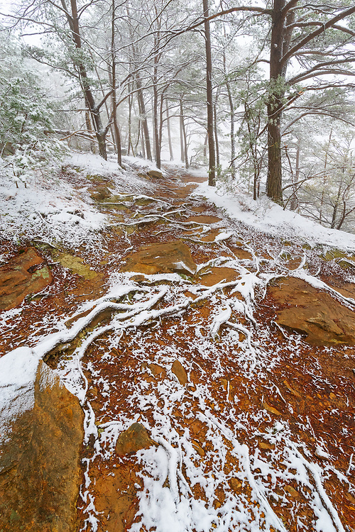 A dusting of snow paints fantastic textures and lines through the path along Beauty Mountain at the New River Gorge in West Virginia.
