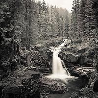 Silver Falls on the Ohanapecosh River in Mt. Rainier National Park, WA.<br /> <br /> 12x12 inch square prints(8x8 inch photo) printed on Kodak Endura paper (lustre only)