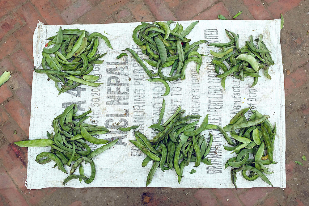 Green beans for sale at an early morning vegetable market on the streets of Patan, Nepal.