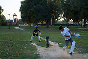 Boys play cricket in the park at India Gate, New Delhi, India