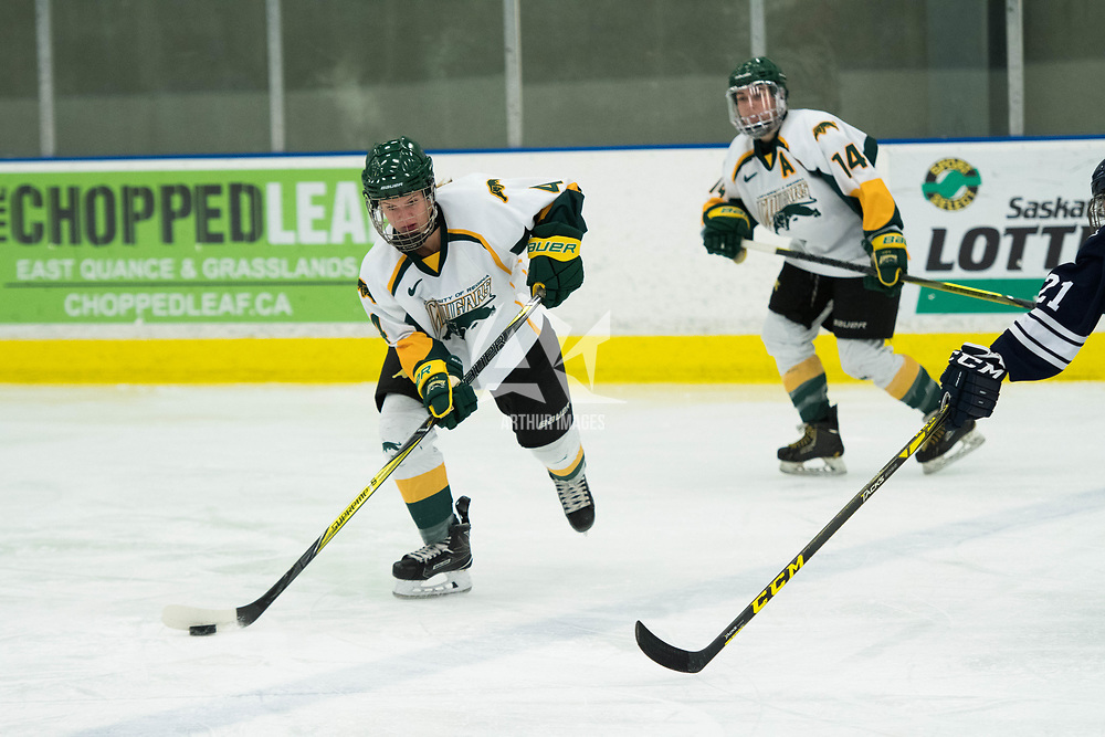 1st year defence man Mackenzie Hutchinson (4) of the Regina Cougars in action during the Women's Hockey home game on October 13 at Co-operators arena. Credit: Arthur Ward/Arthur Images