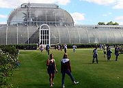 © Licensed to London News Pictures. 31/08/2012. Kew, UK Visitors enjoy the sunshine on the last meteorogical day of summer at Kew Gardens today 31 August 2012. The summer of 2012 has been one of the wettest on record in Britain. Photo credit : Stephen Simpson/LNP