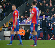 Crystal Palace's Alan Pardew looks on dejected during the Premier League match at Selhurst Park Stadium, London. Picture date December 17th, 2016 Pic David Klein/Sportimage