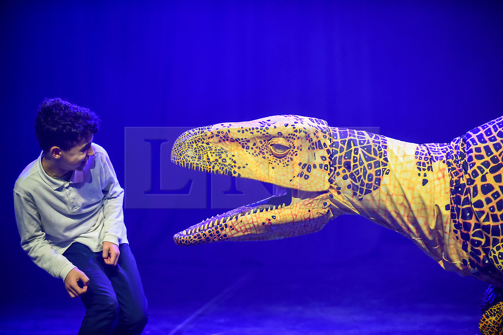 © Licensed to London News Pictures. 13/02/2020. LONDON, UK. A pupil from Stockwell Primary School meets a Fukui raptor from Erth's Dinosaur Zoo, one of the acts forming part of Imagine Children's Festival at Southbank Centre for half term 12 to 23 February 2020. (Permission to photograph obtained from schools teacher).  Photo credit: Stephen Chung/LNP