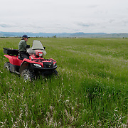 Denver Holt riding a four wheeler and getting ready to drag grassland for short-eared owls nests. Ninepipe NWR.,Charlo, Montana