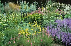 Border in the gravel garden in summer