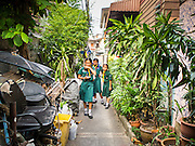 18 FEBRUARY 2015 - BANGKOK, THAILAND: Thai girl scouts walk down a soi (alley) in the Kudeejeen neighborhood in Bangkok. Santa Cruz church was established in 1770 and is the heart of the community. It is one of the oldest and most historic Catholic churches in Thailand. The church was originally built by Portuguese soldiers allied with King Taksin the Great. Taksin authorized the church as a thanks to the Portuguese who assisted the Siamese during the war with Burma. Most of the Catholics in the neighborhood trace their family roots to the original Portuguese soldiers who married Siamese (Thai) women. There are about 300,000 Catholics in Thailand in about 430 Catholic parishes and about 660 Catholic priests in Thailand. Thais are tolerant of other religions and although Thailand is officially Buddhist, Catholics are allowed to freely practice and people who convert to Catholicism are not discriminated against.        PHOTO BY JACK KURTZ