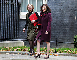 © Licensed to London News Pictures. 29/10/2019. London, UK.  Liz Truss, Secretary of State for International Trade with Theresa Villiers Secretary of State for Food arrives at 10 Downing Street for a Cabinet meeting . As Boris Johnson tries to get his snap election poll through Parliament again this week. Photo credit: Alex Lentati/LNP