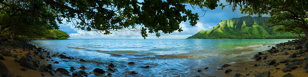 Panoramic mural view of Kahana Bay framed by trees on the windward coast of Oahu, Hawaii