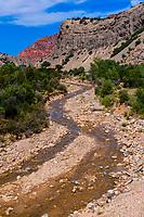 Cedar Canyon, near Cedar City, Utah USA