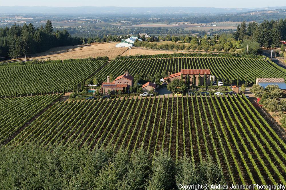 Alloro Winery, Chehalem Mountain AVA, Willamette Valley, Oregon