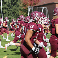Football: University of Puget Sound Loggers vs. Linfield College Wildcats