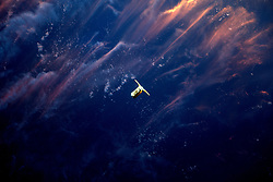 Apr 26, 2017 - Space - On Saturday April 22, 2017, Expedition 51 Flight Engineer Thomas Pesquet of the European Space Agency photographed Orbital ATK's Cygnus spacecraft as it approached the International Space Station. Using the station's robotic Canadarm2, Cygnus was successfully captured by Pesquet and Commander Peggy Whitson at 6:05 a.m. EDT Saturday morning. The spacecraft's arrival brought more than 7,600 pounds of research and supplies to support Expedition 51 and 52. The Expedition 51 crew worked to offload the new science experiments and crew supplies this week. (Credit Image: ? ESA/NASA/ZUMAPRESS.com)