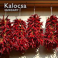 Kalocsa Paprika | Kalocsa Pictures Photos Images & Fotos