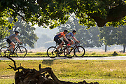 UNITED KINGDOM, London: 25 June 2020 <br /> Cyclists make their way through Richmond Park, London in the early morning sun this morning. Temperatures have soared over the last few days and are expected to reach up to 34C degrees today, with possibly the highest ever UV levels being recorded.