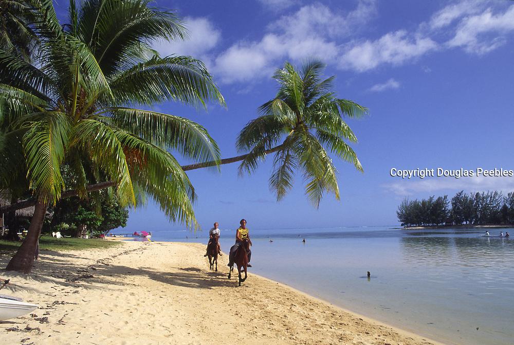 Horsebackriding, Moorea, French Polynesia<br />