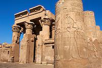 Egypte, Haute Egypte, croisiere sur le Nil entre Louxor et Assouan, Kom Ombo, temple de Sobek, le dieu-crocodile // Egypt, Nile valley, cruise on the Nile river between Luxor and Aswan, Kom Ombo, Temple of Sobek and Horus