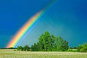 Rainbow <br /> Wroxton<br /> Saskatchewan<br /> Canada