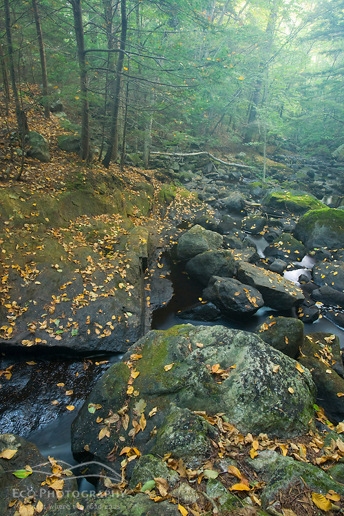 Early fall on the Isinglass River in Strafford, New Hampshire.