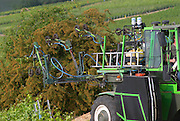 A green vineyard tractor spraying the vines on a slope - detail of the spraying mechanism. This is specifically designed for targeted spraying at the base of the vines, the village of Hautvillers in Vallee de la Marne, Champagne, Marne, Ardennes, France