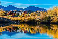 Autumn color at a lake in Littleton, Colorado USA