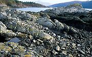 Ardnamurcchan Scotland, UK, view across rocky bay Loch Sunart