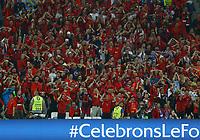 The delusion of Albania supporters<br /> Marseille 15-06-2016 Stade Velodrome Footballl Euro2016 France - Albania  / Francia - Albania Group Stage Group A. Foto Matteo Ciambelli / Insidefoto