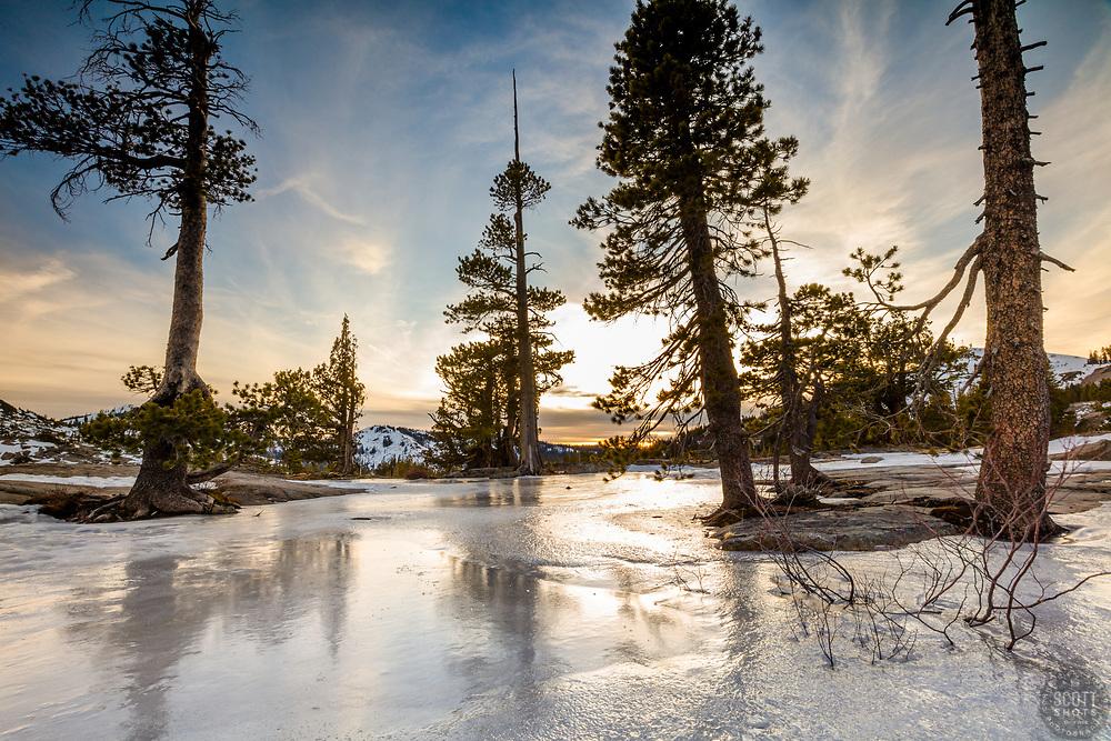 """Frozen Catfish Pond 2"" - Photograph of a frozen over Catfish Pond near Donner Summit."
