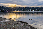 Sunrise over Mercer Island from Seward Park's south Shore