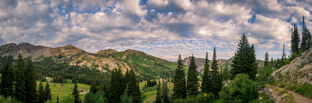 Panoramic view looking down into Albion Basin from the Catherine Pass trail in Utah's Little Cottonwood Canyon on a sunny Summer morning.