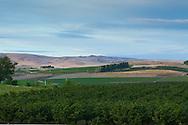Views of the irrigated and lush Yakima Valley, Washington State