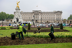 © Licensed to London News Pictures. 04/05/2017. London, UK. Flowers being removed form outside Buckingham Palace, the home of Queen Elizabeth II, where an emergency meeting of staff has reportedly been called. An announcement by the Palace is is expected this morning.  Photo credit: Ben Cawthra/LNP