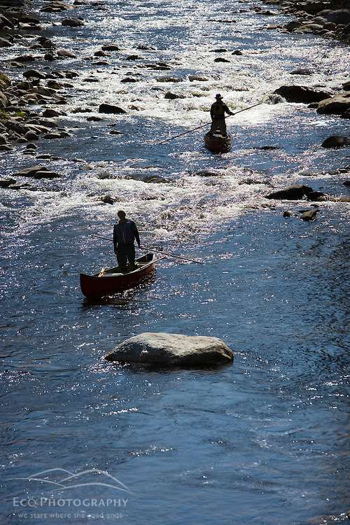 Poling canoes on the Ashuelot River in Surry, NH.  A tributary of the Connecticut River.