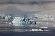 Helicopter returning over icebergs from recce trip to Peter 1 Øy (a very remote Antarctic island in the Bellingshausen Sea)