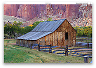 The Gifford Homestead barn at Capitol Reef National Park in autumn, Utah, USA