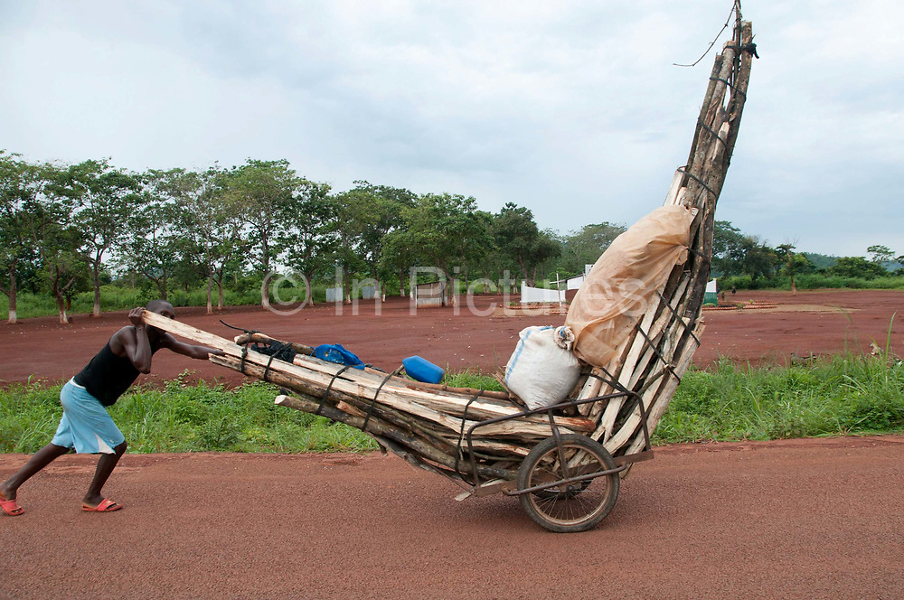 Central African Republic. August 2012. Road to Bouar -  man walking and transporting firewood